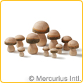 Wooden toadstools 11 pieces - assorted