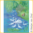 Postcards - The New Swan - by Marjan van Zeyl