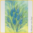 Postcards M. v. Zeyl - Grape Hyacinth
