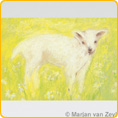Postcards M. v. Zeyl - Lamb