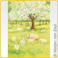 Postcards M.v.Zeyl - Lambs in the orchard - 10 pcs