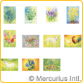 Assortment Spring and Summer I - Postcards - by Marjan van Zeyl