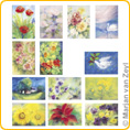 Assortment Flower - Postcards - by Marjan van Zeyl