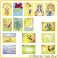 Assortment Spring and Summer - Postcards - by Marjan van Zeyl